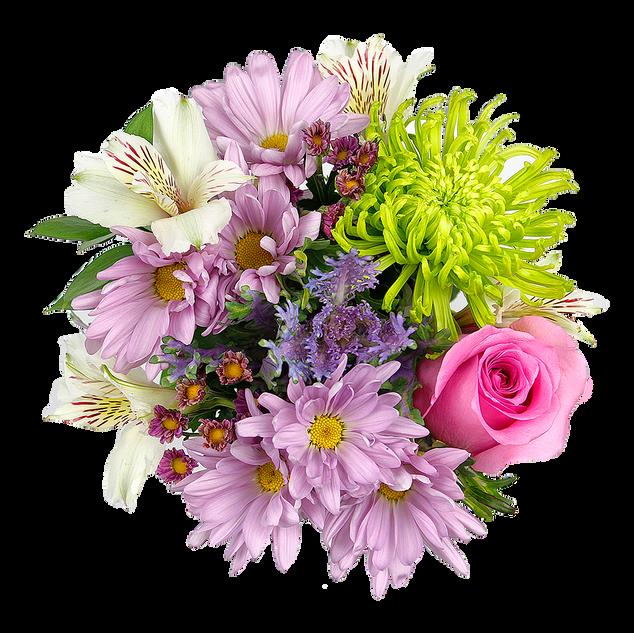 Best of Garden Petite Spring  1