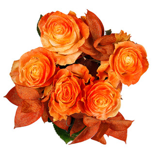Orange Rose Bunch Enhanced