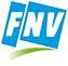 FNV-LOGO-FLASH-CMY.png