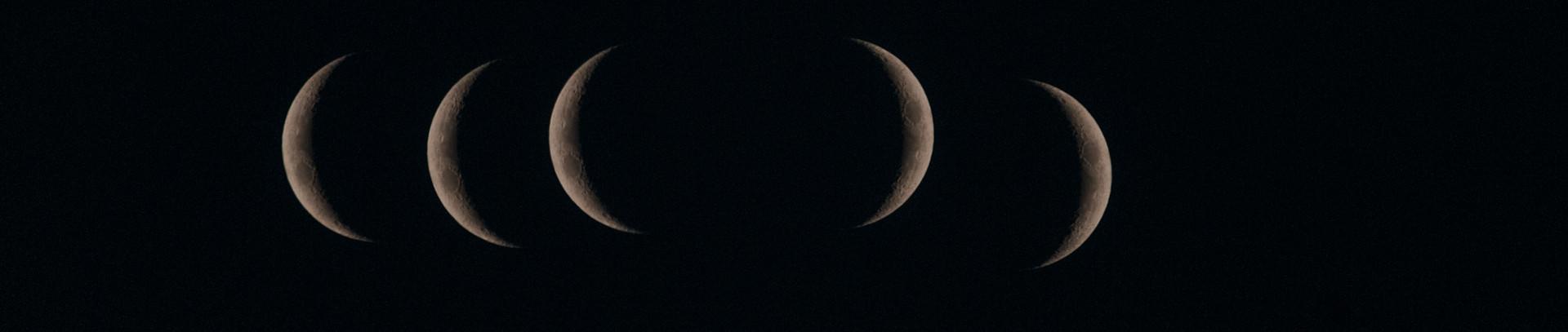 Ciclo luna nueva