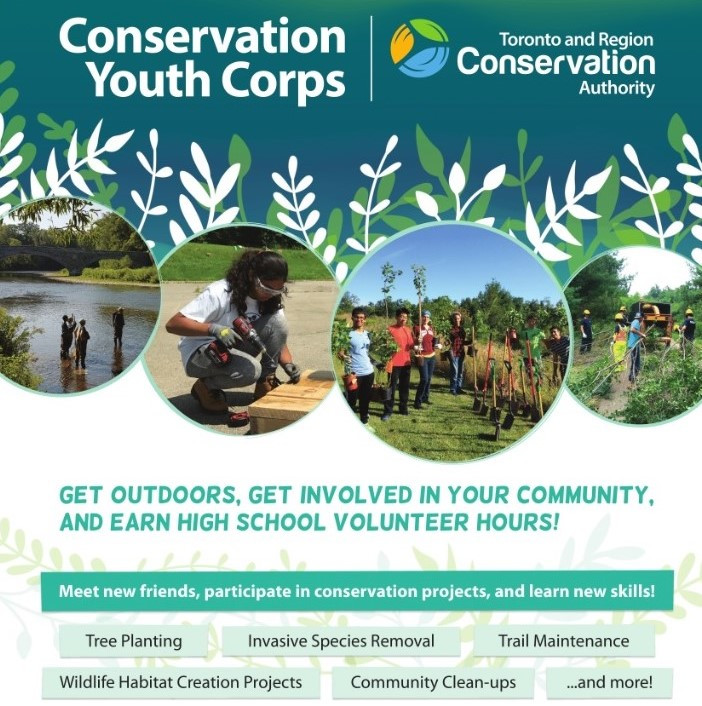 Conservation Youth Corps