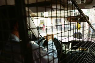 Fenced Cab