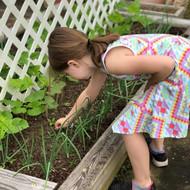JJ working the Garden.jpg