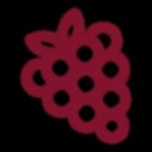 raspberry-10.png