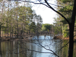 Bridge-Bradley Park