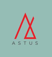 Astus_edited.jpg