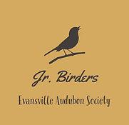 Jr. Birders  -4.jpg