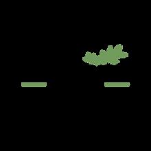 beautésaine logo