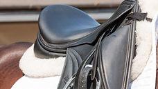 saddle%20shot%202_edited.jpg