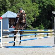 Florida Horse Park,  FL