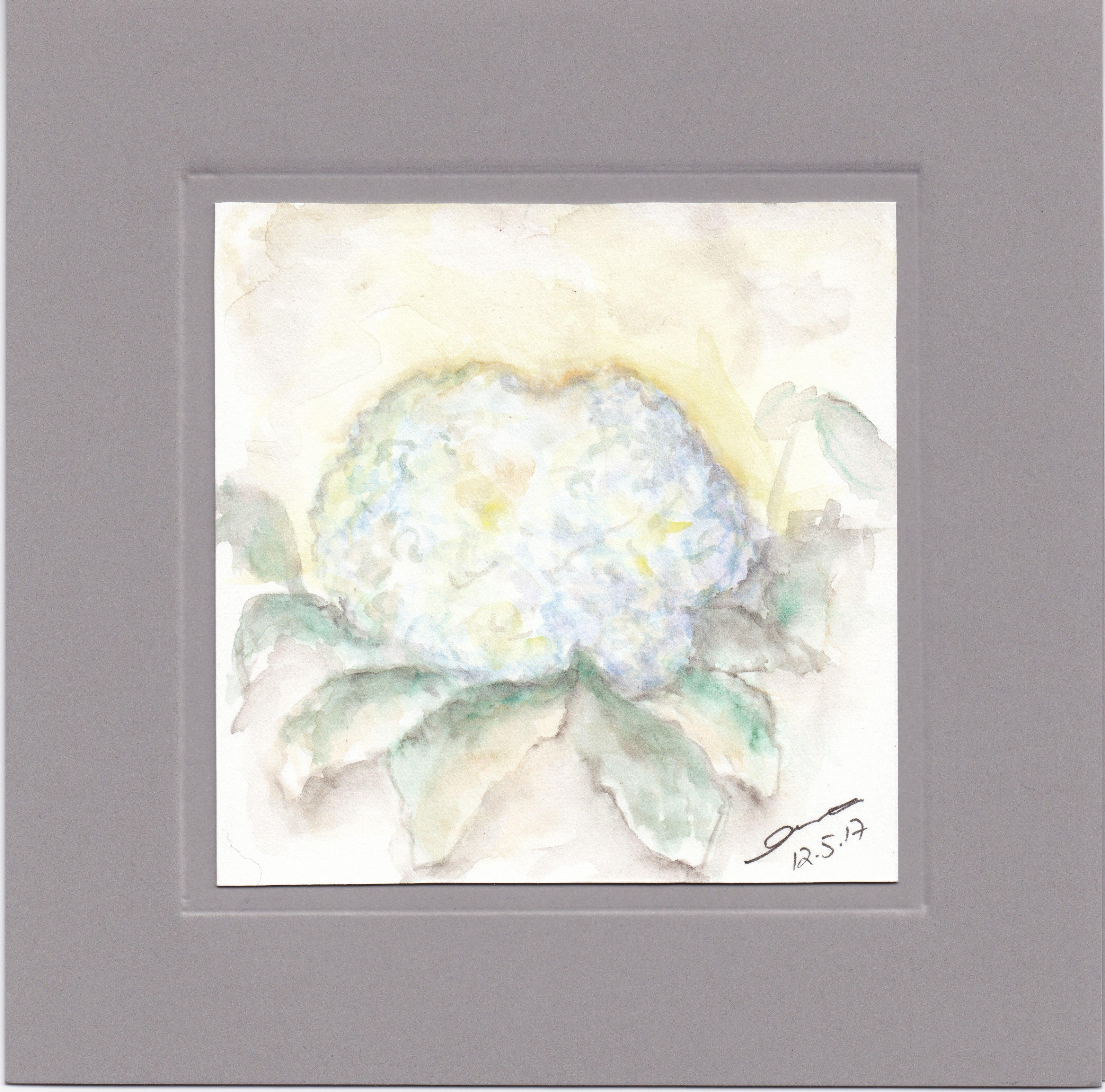 Karte - Hortensien