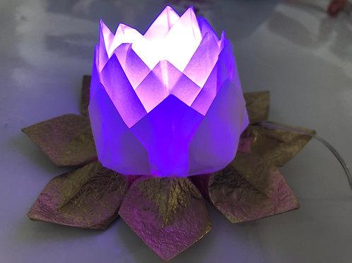 Custom Set of 5 Origami Lotus Lamps