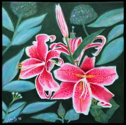 """Stargazer Lilies"""