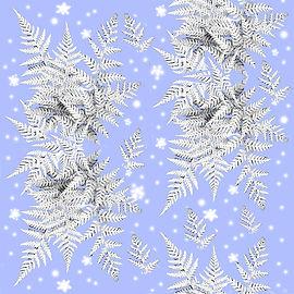 silver fern offset 3.jpg
