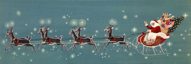 eight reindeer.jpg