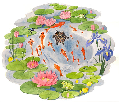 pond-web-csk.jpeg