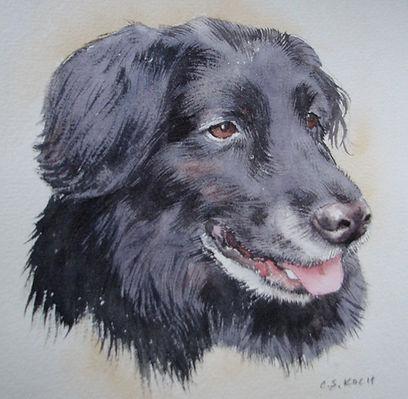 black dog port.jpg