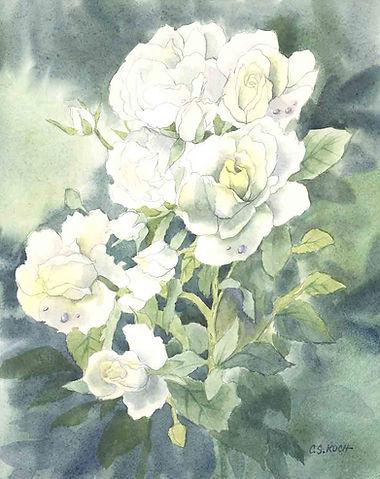 white roses sample copy.jpg