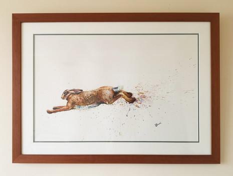 Hare Framed