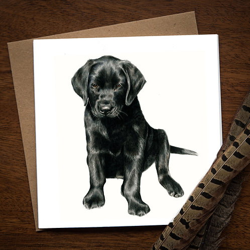 Black Labrador Pup Greetings Card