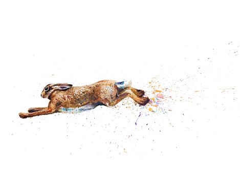 Hare today, Gone tomorrow! Mounted Print