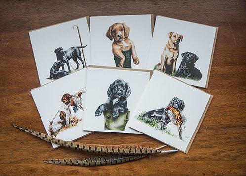 The Gundog Card Collection