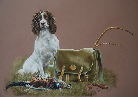 A Spaniel with it's Game Print.
