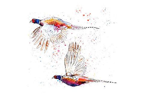 Two Flying Pheasants