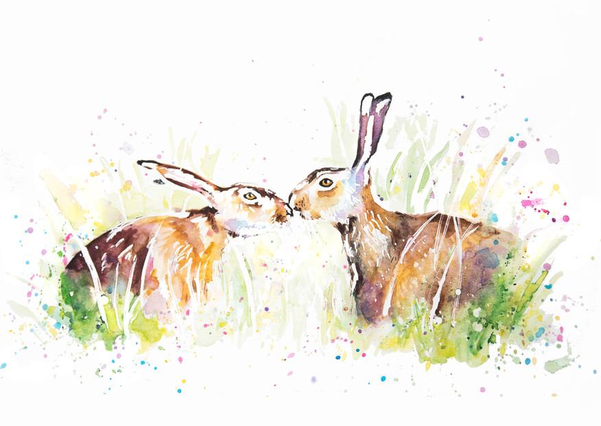 Hare2.jpg