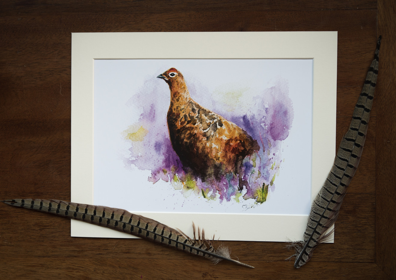 Grouse in Heather - Mounted