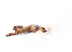 Running Hare_edited