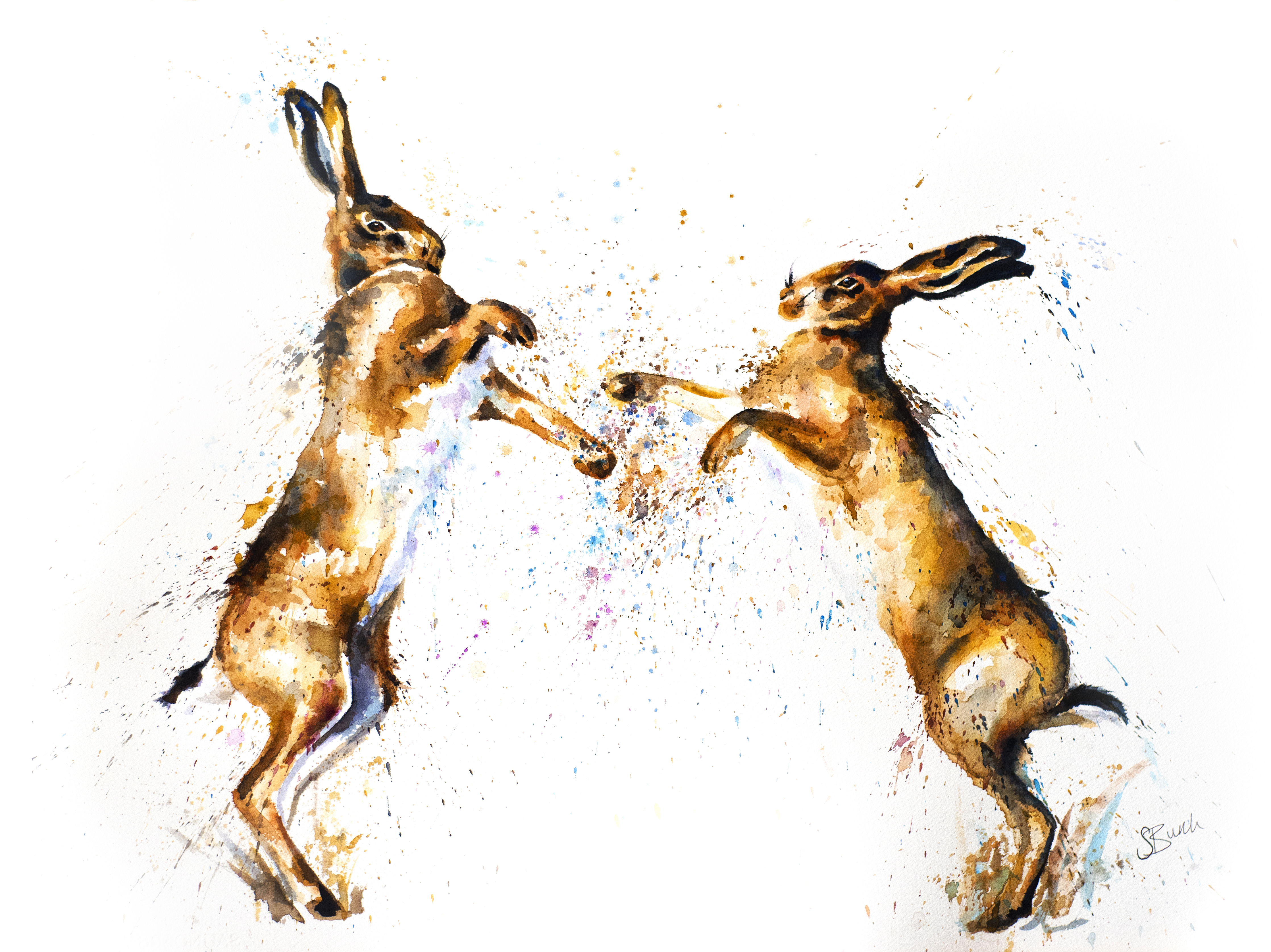 hares fighting copy1
