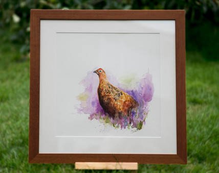 'Grouse' Original For Sale