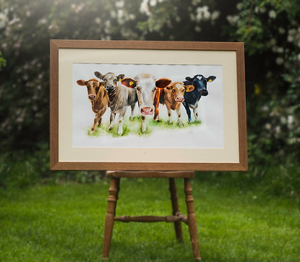 'Have you Herd?' Framed Original