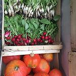 Gemüse CMS.jpg