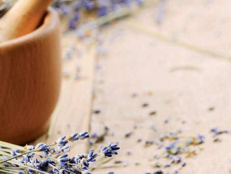 Lavender History: Mummies