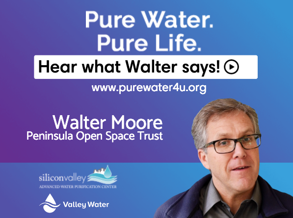 Walter Moore FB 1200 x 900.png