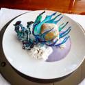 Catamaran Jans Felion Award Winning Dessert.jpg