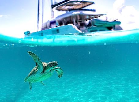 U.S. Virgin Islands Reopens to Tourism