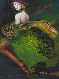 Boa Constrictor / Snake Boa