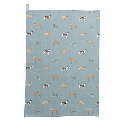 Sighthound Tea Towel Pointy Faces Whippet Lurcher Greyhound Gift