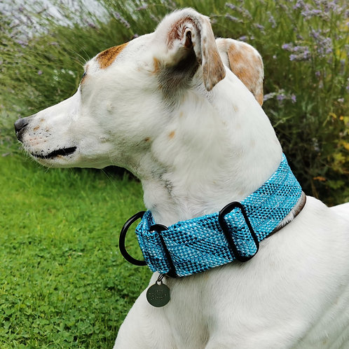 "Martingale Collar 1.5"" Blue"