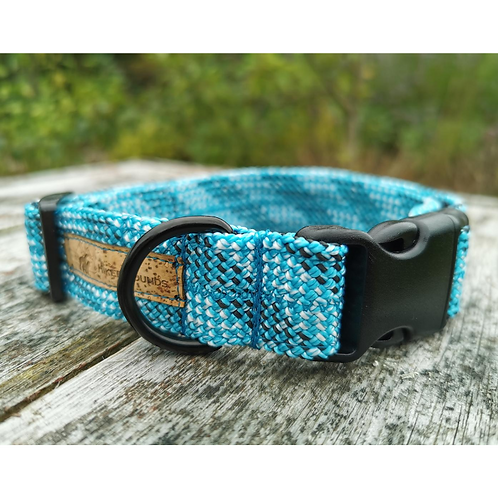 Explore Dog Collar Blue