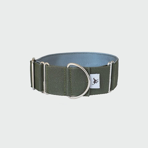 "2"" Wide Sighthound Greyhound Whippet Lurcher Collar in Olive"