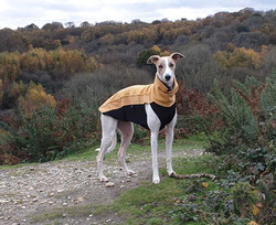Whippet Lurcher Fleece Jumper