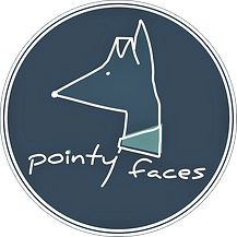 Pointy Faces