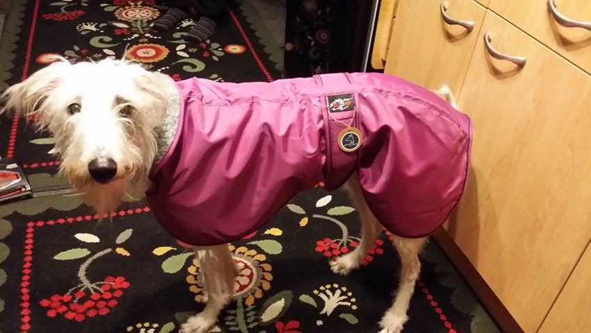 Lurcher Coat Fleece Lined Waterproof