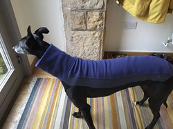 Greyhound Jumper Blue UK Art