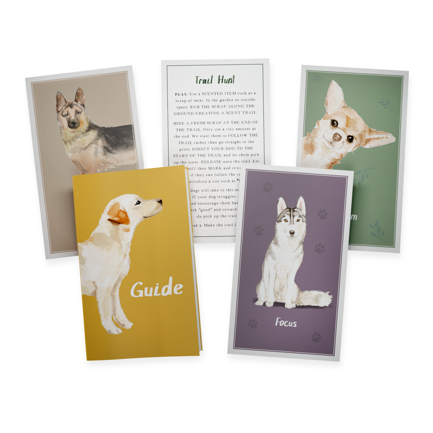 Calming Dog Games Card Deck Of 52 Brain Games And Enrichment Activities Pointy Faces