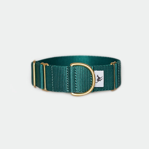 "1.5"" dark green martingale collar greyhound lurcher whippet"